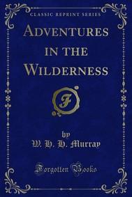 Adventures in the Wilderness - copertina