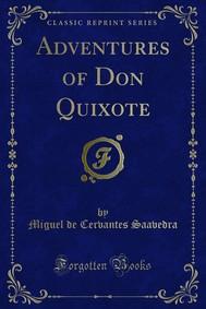 Adventures of Don Quixote - copertina