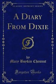 A Diary From Dixie - copertina