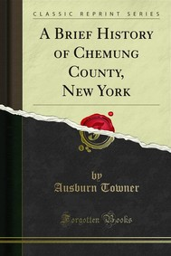 A Brief History of Chemung County, New York - copertina