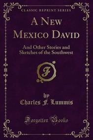 A New Mexico David - copertina