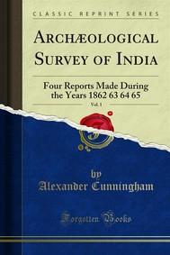 Archæological Survey of India - copertina