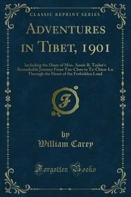 Adventures in Tibet, 1901 - copertina