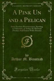 A Pink Un and a Pelican - copertina