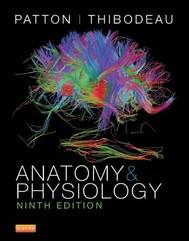 Anatomy and Physiology - copertina