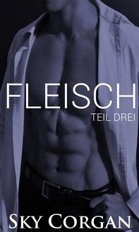 Fleisch: Teil Drei - Librerie.coop