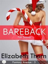 Bareback for Santa - Part 1 (Fantasy Avenue, #3) - copertina