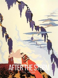After The Storm - copertina