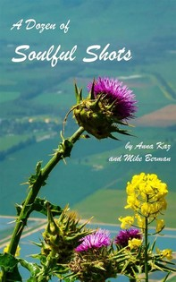 A Dozen of Soulful Shots (Stories+Pictures, #1) - Librerie.coop