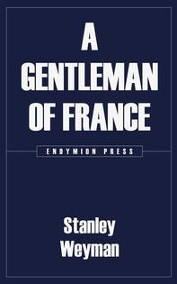 A Gentleman of France - Librerie.coop