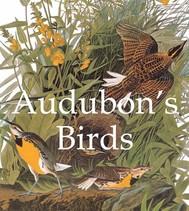 Audubon's Birds - copertina