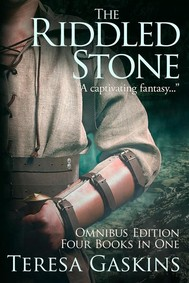 The Riddled Stone - copertina