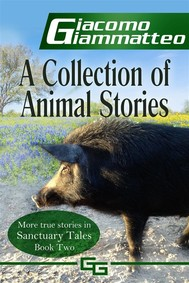 A Collection of Animal Stories - copertina