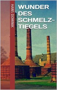 Wunder des Schmelztiegels - Librerie.coop