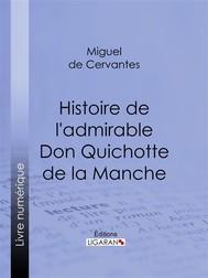 Histoire de l'admirable Don Quichotte de la Manche - copertina