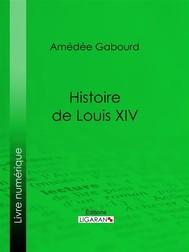Histoire de Louis XIV - copertina