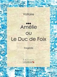 Amélie ou le Duc de Foix - copertina
