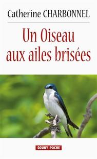 Un Oiseau aux ailes brisées - copertina