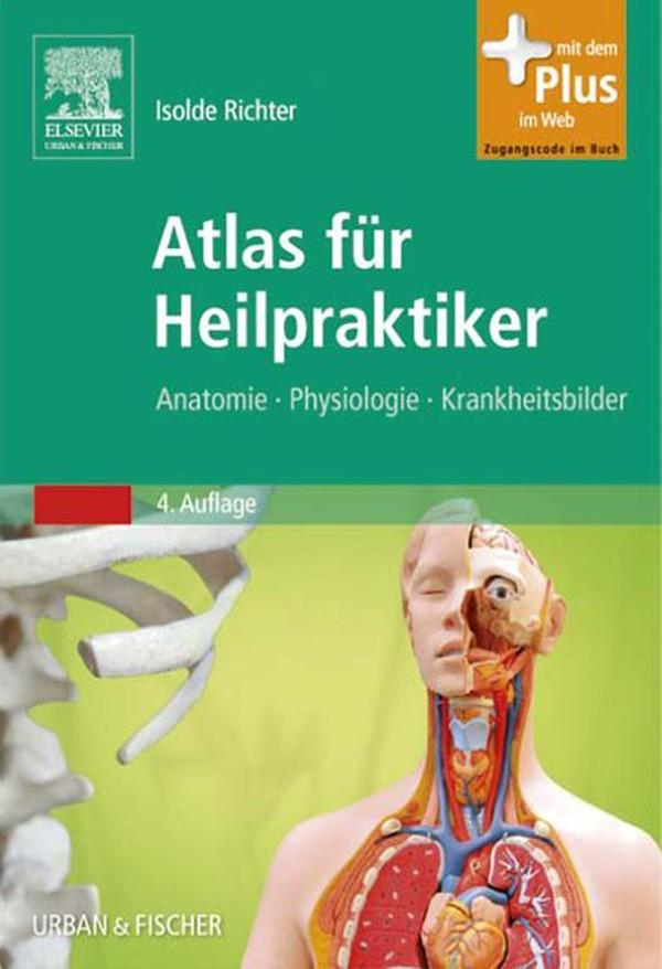 Ausgezeichnet Anatomie Und Physiologie Färbung Arbeitsmappe Kapitel ...