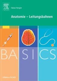 BASICS Anatomie - Leitungsbahnen - copertina