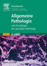 Allgemeine Pathologie und Grundlagen der Speziellen Pathologie - copertina