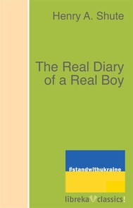 The Real Diary of a Real Boy - copertina