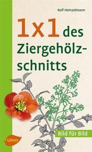 1 x 1 des Ziergehölzschnitts - copertina