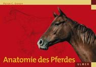 Anatomie des Pferdes - copertina