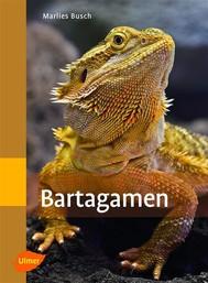 Bartagamen - copertina