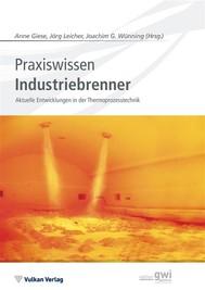Praxiswissen Industriebrenner - copertina