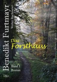 Benedikt Furtmayr (1) - copertina