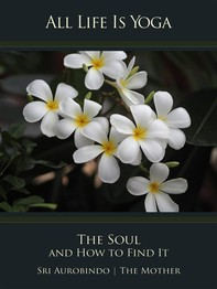 All Life Is Yoga: The Soul and How to Find It - Librerie.coop