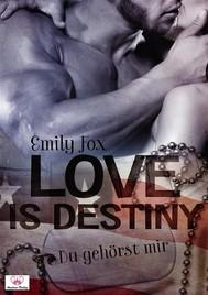 Love is destiny - Du gehörst mir - copertina