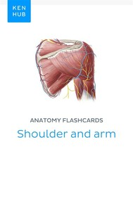 Anatomy flashcards: Shoulder and arm - copertina