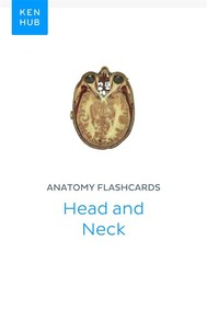 Anatomy flashcards: Head and Neck - copertina