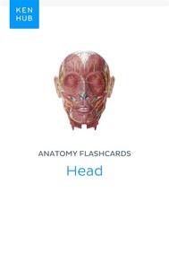 Anatomy flashcards: Head - copertina