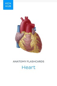 Anatomy flashcards: Heart - copertina