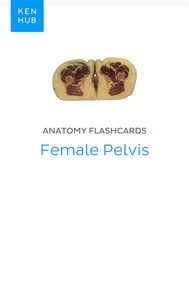 Anatomy flashcards: Female Pelvis - copertina