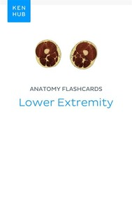 Anatomy flashcards: Lower Extremity - copertina
