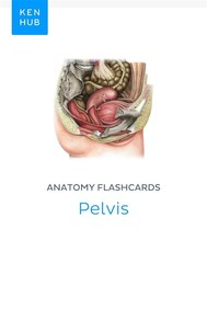 Anatomy flashcards: Pelvis - copertina