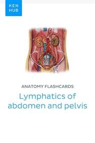 Anatomy flashcards: Lymphatics of abdomen and pelvis - copertina