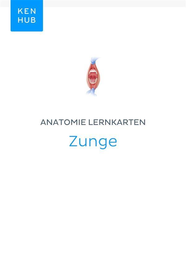 Anatomie Lernkarten: Zunge, Kenhub | Ebook Bookrepublic