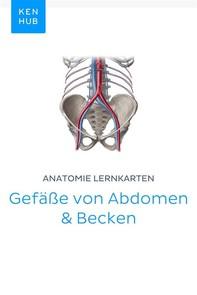Anatomie Lernkarten: Gefäße von Abdomen & Becken - Librerie.coop