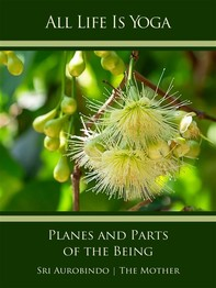 All Life Is Yoga: Planes and Parts of the Being - Librerie.coop