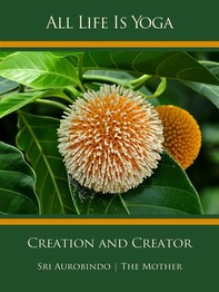 All Life Is Yoga: Creation and Creator - Librerie.coop