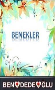 Benekler - copertina