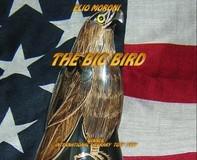 The Big Bird - Librerie.coop