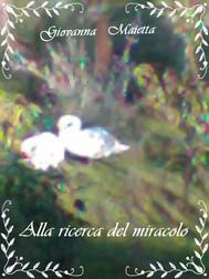Alla ricerca del miracolo - copertina