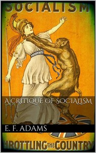 A Critique of Socialism - copertina