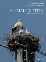 Animali di città - copertina